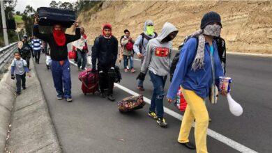 migrantes Brasil